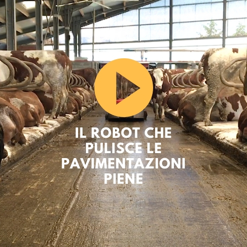 video robot pulizia corsie stalla