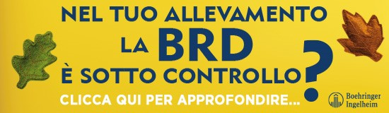 Controllo-BRD-Boehringer