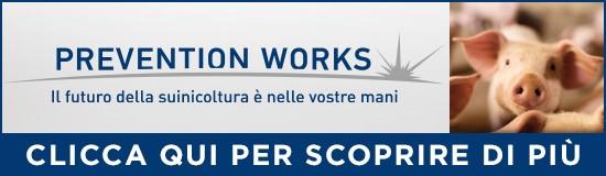 prevention-works-il-futuro-della-suinicoltura-nelle-vostre-mani