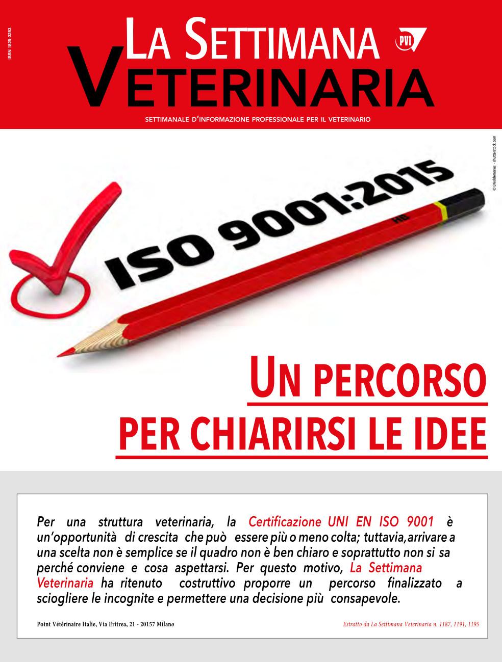 ISO 9001:2015 Un percorso per chiarirsi le idee